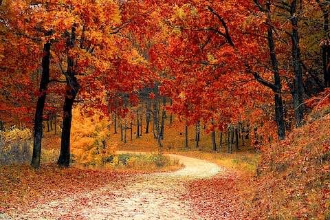 Du lịch châu âu vào mùa thu