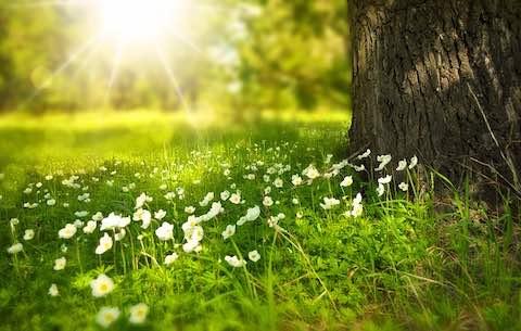 du lịch châu âu vào mùa xuân