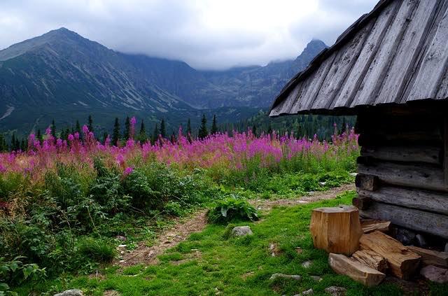 Thung lũng Chochołowska- du lịch zakopane ba lan