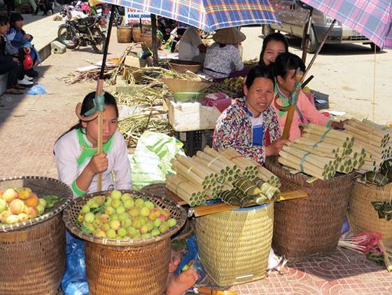 one woman is selling Docynia indica ( like an apple) in Ha giang