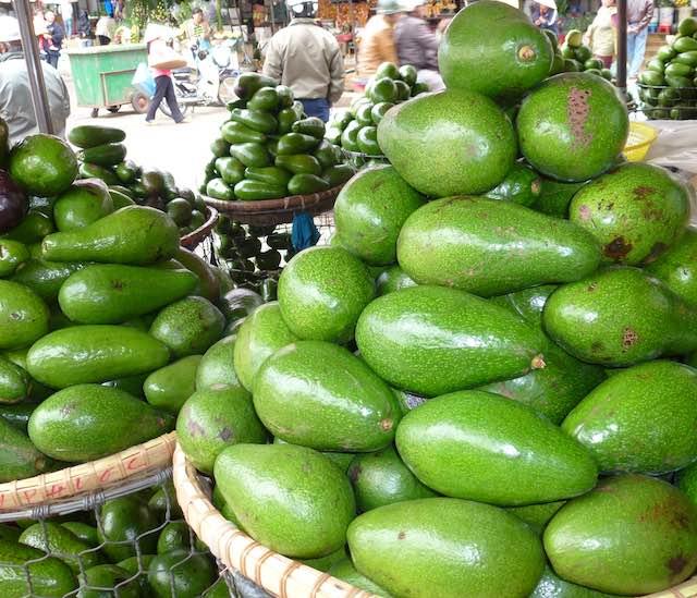 Avocado in Dalat day market